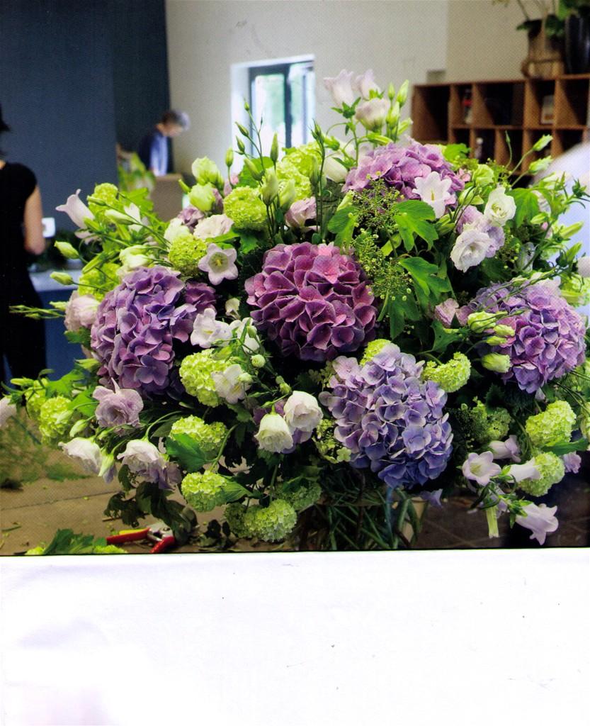 blaue Hortensien lindgrün