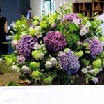 Hortensien-lindgrün
